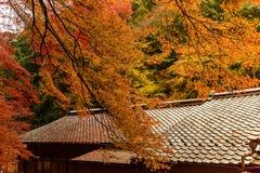 Εποχή φθινοπώρου του Κιότο Στοκ φωτογραφία με δικαίωμα ελεύθερης χρήσης