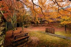 Εποχή φθινοπώρου του Κιότο Στοκ εικόνα με δικαίωμα ελεύθερης χρήσης