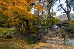 Εποχή χρώματος φθινοπώρου γύρω από Josen-josen-ji Στοκ Φωτογραφία