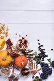 Εποχιακά λαχανικά, κολοκύνθες, μανιτάρια, μέλι και φασόλια φθινοπώρου στοκ εικόνες με δικαίωμα ελεύθερης χρήσης