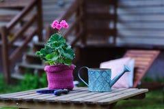εποχιακή έννοια εργασίας θερινών κήπων Στοκ Φωτογραφίες