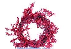 Εποχιακό κόκκινο στεφάνι μούρων ελαιόπρινου στο άσπρο υπόβαθρο Στοκ Φωτογραφία