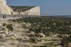 Επτά αδελφές, Αγγλία, το UK  άσπρη παραλία, μπλε ουρανοί και πράσινα φύκια στοκ εικόνες με δικαίωμα ελεύθερης χρήσης
