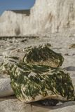 Επτά αδελφές, ανατολικό Σάσσεξ, Αγγλία, το UK  άσπρη παραλία, πράσινα φύκια - μια κινηματογράφηση σε πρώτο πλάνο στοκ φωτογραφία με δικαίωμα ελεύθερης χρήσης