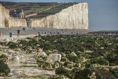 Επτά αδελφές, ανατολικό Σάσσεξ, Αγγλία, το UK  άσπρη παραλία, πράσινα φύκια και tpurists στοκ εικόνα με δικαίωμα ελεύθερης χρήσης