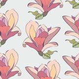 λεπτά λουλούδια Στοκ Φωτογραφία