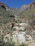 Επτά πτώσεις, Santa Catalina Mountains, Αριζόνα Στοκ Εικόνα