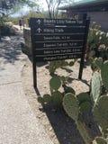 Επτά πτώσεις, Santa Catalina Mountains, Αριζόνα Στοκ εικόνα με δικαίωμα ελεύθερης χρήσης