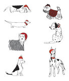 Επτά σκυλιά που ντύνονται για το διανυσματικό σύνολο Χριστουγέννων Στοκ φωτογραφία με δικαίωμα ελεύθερης χρήσης