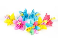 Επτά χρωματισμένα λουλούδια εγγράφου Στοκ Εικόνες