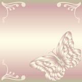 λεπτή πεταλούδα Στοκ Εικόνα