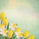 λεπτομερές ανασκόπηση floral διάνυσμα σχεδίων Στοκ εικόνες με δικαίωμα ελεύθερης χρήσης