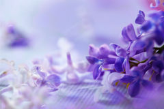 λεπτομερές ανασκόπηση floral διάνυσμα σχεδίων στοκ φωτογραφία με δικαίωμα ελεύθερης χρήσης