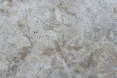 λεπτομερής πατωμάτων σύσταση πετρών φωτογραφιών αιχμηρή πολύ Στοκ Εικόνες