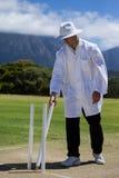 Επόπτης που μεταθέτει wicket στον τομέα στην αντιστοιχία Στοκ Φωτογραφία