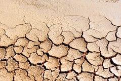 Ερήμωση, κλιματική αλλαγή, ξηρά και ραγισμένη γη στοκ εικόνες