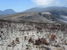 Ερήμωση μετά από την πυρκαγιά βουνών στοκ φωτογραφίες με δικαίωμα ελεύθερης χρήσης