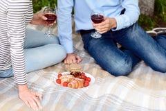 Εραστές που πίνουν το κρασί στο πάρκο Στοκ Εικόνες