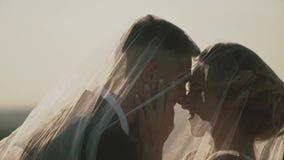Εραστές σε έναν τομέα στο ηλιοβασίλεμα Ζεύγος ερωτευμένο ο ένας εναντίον του άλλου με τις ιδιαίτερες προσοχές, κινηματογράφηση σε απόθεμα βίντεο