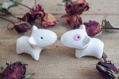 Εραστές σκυλιών, δύο στο ξύλινο πάτωμα με τα τριαντάφυλλα γύρω στοκ εικόνες