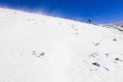 Εραστές στο βουνό χιονιού Στοκ Εικόνες