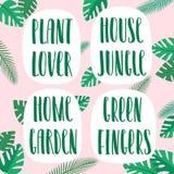 Εραστής εγκαταστάσεων, ζούγκλα σπιτιών, εγχώριος κήπος, πράσινα δάχτυλα, συρμένη χέρι διανυσματική εγγραφή και floral διακόσμηση  διανυσματική απεικόνιση
