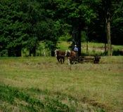Εργάσιμη ημέρα Amish στοκ φωτογραφία με δικαίωμα ελεύθερης χρήσης