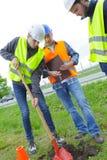 Εργάτες οικοδομών που σκάβουν στο πάρκο Στοκ εικόνες με δικαίωμα ελεύθερης χρήσης