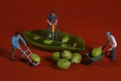 Εργάτες οικοδομών στα εννοιολογικά καλολογικά στοιχεία τροφίμων με τα αιφνιδιαστικά μπιζέλια Στοκ Φωτογραφίες