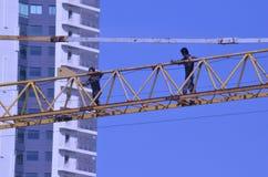 Εργαζόμενοι γερανών Στοκ φωτογραφία με δικαίωμα ελεύθερης χρήσης