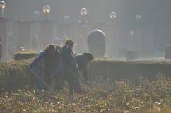 Εργαζόμενοι γυναικών Στοκ Φωτογραφίες