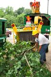 εργαζόμενοι δέντρων στοκ φωτογραφία