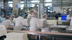 Εργαζόμενοι εγκαταστάσεων στα ομοιόμορφα τρόφιμα πακέτων από μια κινούμενη γραμμή απόθεμα βίντεο
