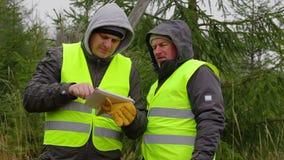 Εργαζόμενοι με το PC ταμπλετών κοντά στις ερυθρελάτες στο δάσος απόθεμα βίντεο