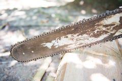 Εργαζόμενοι ξυλουργών που κόβουν το κολόβωμα Στοκ Φωτογραφίες