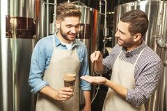 Εργαζόμενοι που ελέγχουν τα σιτάρια λυκίσκου για την παραγωγή μπύρας στοκ εικόνες