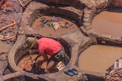 Εργαζόμενοι φλοιών σε Fes Μαρόκο Στοκ φωτογραφία με δικαίωμα ελεύθερης χρήσης