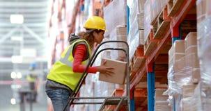 Εργαζόμενος αποθηκών εμπορευμάτων αρσενικών που χρησιμοποιεί τη σκάλα για να τακτοποιήσει το κουτί από χαρτόνι απόθεμα βίντεο