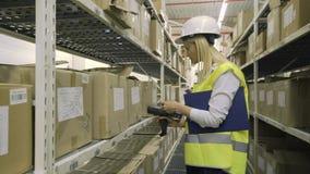 Εργαζόμενος αποθηκών εμπορευμάτων Femalr που ελέγχει το φορτίο στα ράφια απόθεμα βίντεο