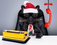 Εργαζόμενος γραφείων σκυλιών στις διακοπές Χριστουγέννων Στοκ Φωτογραφίες