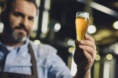 Εργαζόμενος ζυθοποιείων με το ποτήρι της μπύρας Στοκ Φωτογραφία