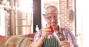 Εργαζόμενος ζυθοποιείων που ελέγχει το προϊόν απόθεμα βίντεο