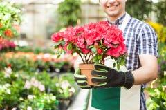 Εργαζόμενος θερμοκηπίων που κρατά ένα δοχείο λουλουδιών Στοκ φωτογραφία με δικαίωμα ελεύθερης χρήσης