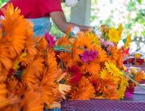 Εργαζόμενος και λουλούδι Στοκ φωτογραφία με δικαίωμα ελεύθερης χρήσης