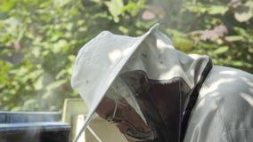 Εργαζόμενος μελισσοκόμος στο προστατευτικά καπέλο και το πέπλο απόθεμα βίντεο