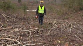 Εργαζόμενος με το αλυσιδοπρίονο που περπατά μέσω της απότομης δασικής κλίσης απόθεμα βίντεο