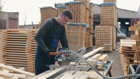 Εργαζόμενος ξυλουργών που φορά τα προστατευτικά δίοπτρα κατασκευής που χρησιμοποιούν την ξύλινη τέμνουσα μηχανή το άτομο κόβει τι απόθεμα βίντεο