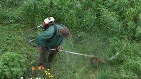 Εργαζόμενος που κόβει την πράσινη χλόη στον κήπο, που χρησιμοποιεί χειρωνακτικό trimmer χορτοταπήτων βενζίνης φιλμ μικρού μήκους