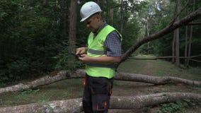 Εργαζόμενος που χρησιμοποιεί τα πεσμένα δέντρα ταινιών και ταμπλετών μέτρου πλησίον φιλμ μικρού μήκους