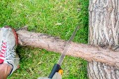 Εργαζόμενος στον κήπο, ένα Mann που πριονίζει ένα κούτσουρο του ξύλου στοκ εικόνες